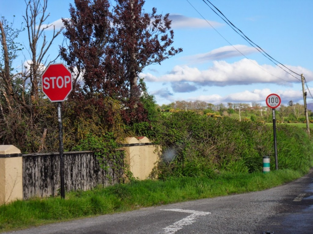 Irland 350