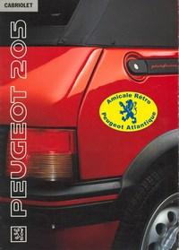P_205 cab2