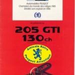P_205 gti 130 87